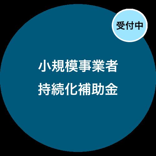丸円_持続化補助金